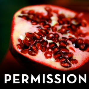 Permission_Sq2